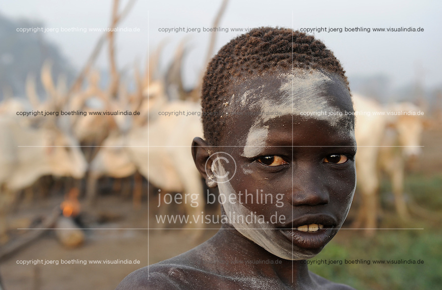 SUED-SUDAN  Bahr el Ghazal region , Lakes State, Dinka Hirten mit Zeburindern im cattle camp / SOUTH SUDAN  Bahr al Ghazal region , Lakes State, Dinka shepherd with Zebu cow in cattle camp, ash smeared boy
