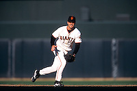 SAN FRANCISCO, CA - Jeff Kent of the San Francisco Giants plays defense at second base during a game against the St. Louis Cardinals at Pacific Bell Park in San Francisco, California in 2002. Photo by Brad Mangin