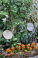 Houseplants, Ficus and Dieffenbachia, Wicked Plants Exhibit, Conservatory of Flowers, San Francisco
