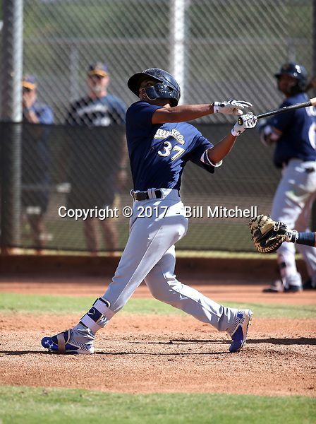 Andres Melendez - 2017 AIL Brewers (Bill Mitchell)