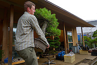 Adam Jones, a bonsai apprentice at the Mansei nursery carrying a bonsai tree. Bonsai-mura, Omiya, Saitama Prefecture, Japan, June 25, 2013. The Omiya Bonsai Village was founded in 1925 and is Japan's most famous production center for bonsai.