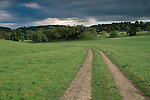 rural dirt road through green grass field pasture ranch in spring below dark grey storm clouds, Santa Clara County, California