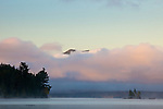 Sunrise on Moosehead Lake, Lily Bay State Park, Piscataquis County, ME, USA