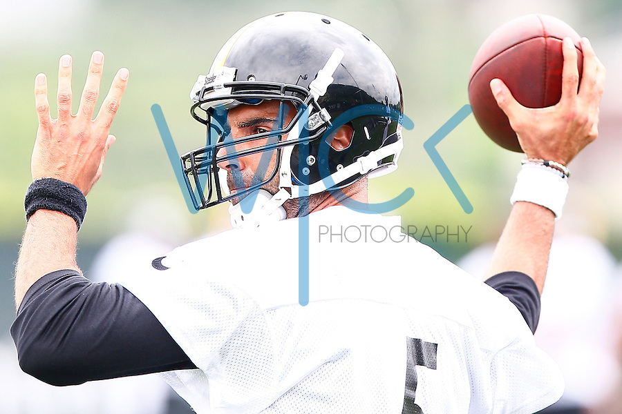 Bruce Gradkowski #5 of the Pittsburgh Steelers throws a pass during OTA's at the Rooney Sports Complex on the Side Side in Pittsburgh, Pennsylvania on June 2, 2016. (Photo by Jared Wickerham/DKPittsburghSports)
