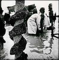 Europe/France/Picardie/80/Somme/Baie de Somme/le Crotoy: Paysage de la Baie de Somme- Charles Derosière myticulteur  récolte les moules de Bouchot en baie de Somme -   Autorisation  N: 291