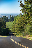 USA, Oregon, Willamette Valley, view of vineyards from NE Breyman Orchard Rd. from Durant Vineyards, Dayton