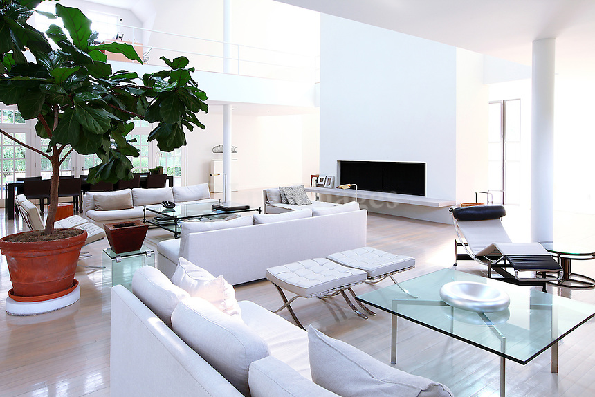 luxury contemporary living room with fireplace