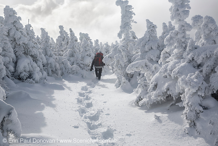 Hiker traveling south on the Appalachian Trail (Carter-Moriah Trail) near the summit of Carter Dome in Bean's Purchase of the New Hampshire White Mountains during the winter months.