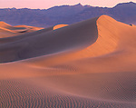 Death Valley National Park, CA: Rippled dune forms on the Mesquite Flats Sand Dunes near Stove Pipe Wells and the Grapevine mountains at dawn