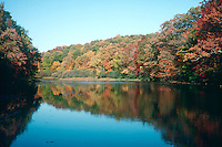 FALL FOLIAGE<br /> Trees reflected in lake