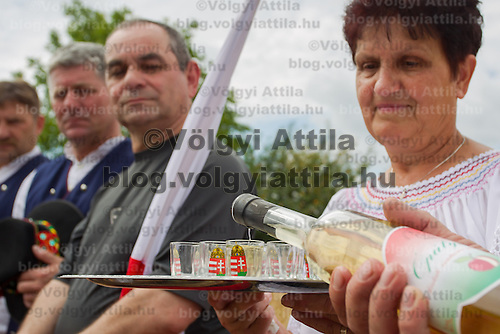 A man fills up glasses with 'palinka', a Hungarian fruit brandy, during a traditional Wheat Harvest Festival in Opalyi (some 280 kilometers East of capital city Budapest), Hungary on July 13, 2013. ATTILA VOLGYI
