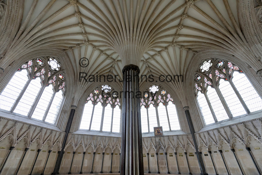 United Kingdom, England, Somerset, Wells: The Chapter House begun in the late 13th century of Wells Cathedral | Grossbritannien, England, Somerset, Wells: The Chapter House der Wells Kathedrale