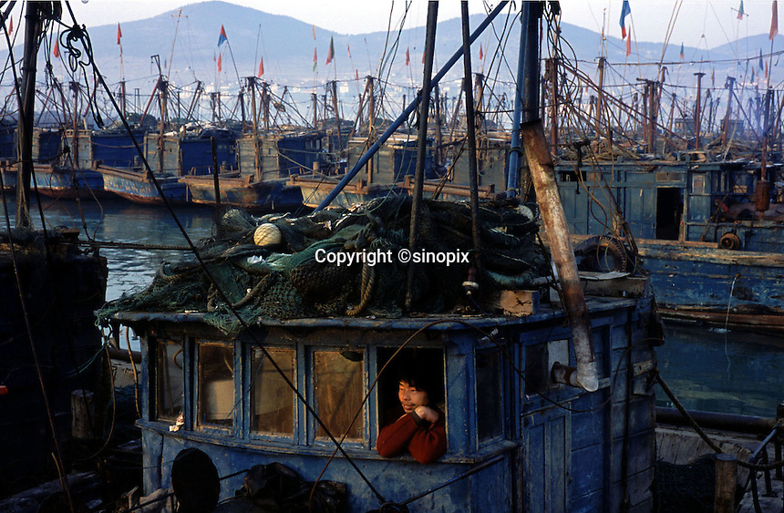 A fisherman on a fishing boat at the harbour at Chuwang fishing village 250 km away from Beijing. The Chinese fishing industry is in decline with the government cut of 10% of boats, which amounts to 10,000 boats and 30,000 fishermen. Most boats in Chuwang have not been put to sea for two weeks. Penglai, China.<br /> 26-JAN-02