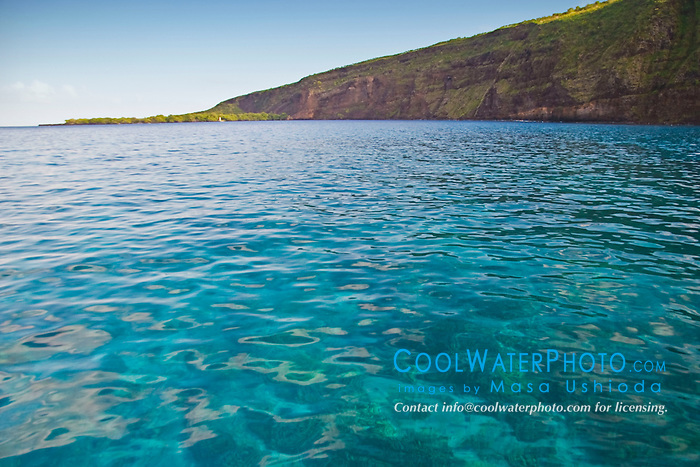Pristine coral reef, Kealakekua Bay Marine Conservation District, Big Island, Hawaii, Pacific Ocean.