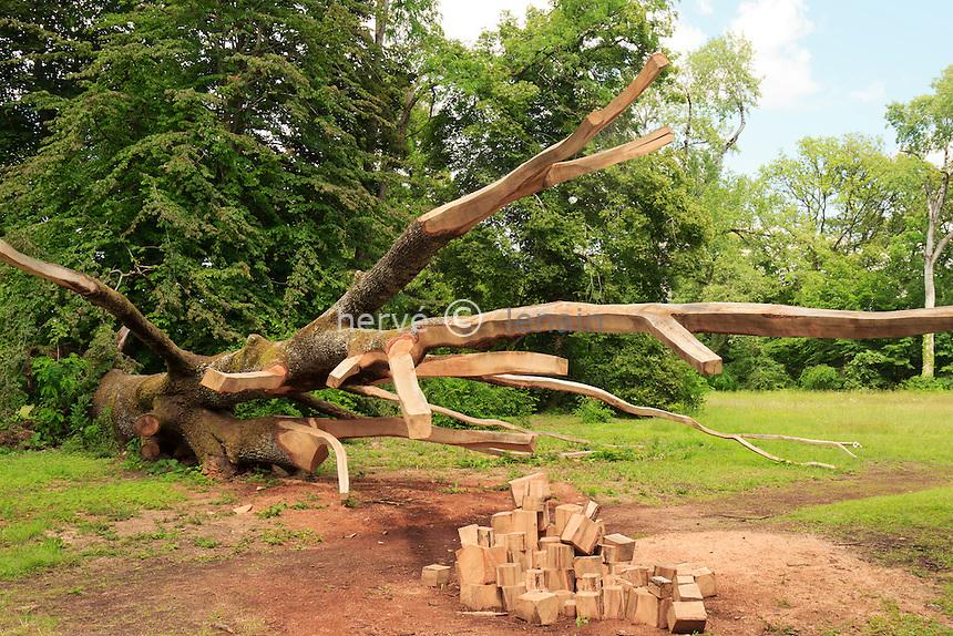 Arboretum des Barres ou Arbofolia, chêne de Hongrie à terre et sculpté par Guillaume Costel  // France, Arboretum des Barres or Arbofolia, Hungarian oak to the ground and carved by William Costel.
