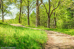 Walking paths at Maudslay State Park in Newburyport, Massachusetts, USA