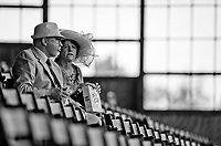 BALTIMORE, MD - MAY 20: Race fans watch undercard races before the 142nd running of the Preakness Stakes on Preakness Stakes Day at Pimlico Race Course on May 20, 2017 in Baltimore, Maryland.(Photo by Scott Serio/Eclipse Sportswire/Getty Images)