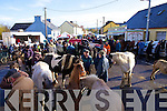 General view of the Annual Horse and Pony fair in Athea last Saturday morning.