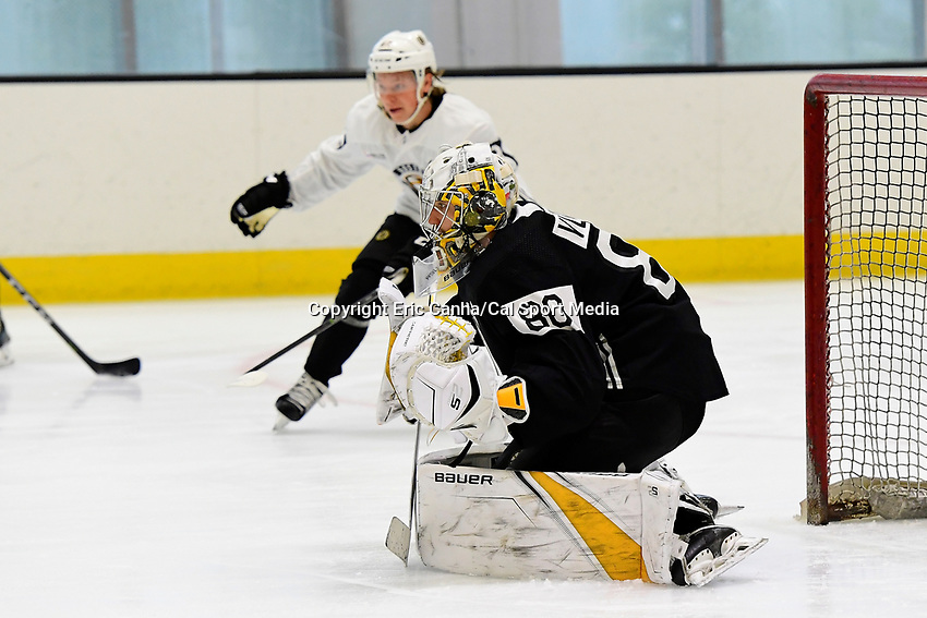 June 28, 2018: Boston Bruins goalie Dan Vladar (80) tends the net during the Boston Bruins development camp held at Warrior Ice Arena in Brighton Mass. Eric Canha/CSM