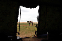 A horse viewed through the tent door of a local Tibetan home. Thousands of Tibetan nomads have been relocated to nearby towns in an attempt to reduce the ecological deterioration around Qinghai Lake, China's largest inland body of water which lies at over 3000m on the Qinghai-Tibetan Plateau. The lake has been shrinking in recent decades, as a result of increased water-usage for local agriculture. Qinghai Province. China. 2010