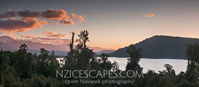 Scenic Lake Ianthe and kahikatea trees at sunset, West Coast, South Westland, New Zealand