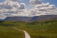 Tablelands from the boardwalk on the Lookout Trail Gros Morne National Park Newfoundland and Labrador