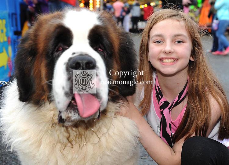 Shona Mangan with 'Halo'   at the Birds Bazaar Carnival Dog Show. Picture: Eamonn Keogh ( MacMonagle, Killarney)
