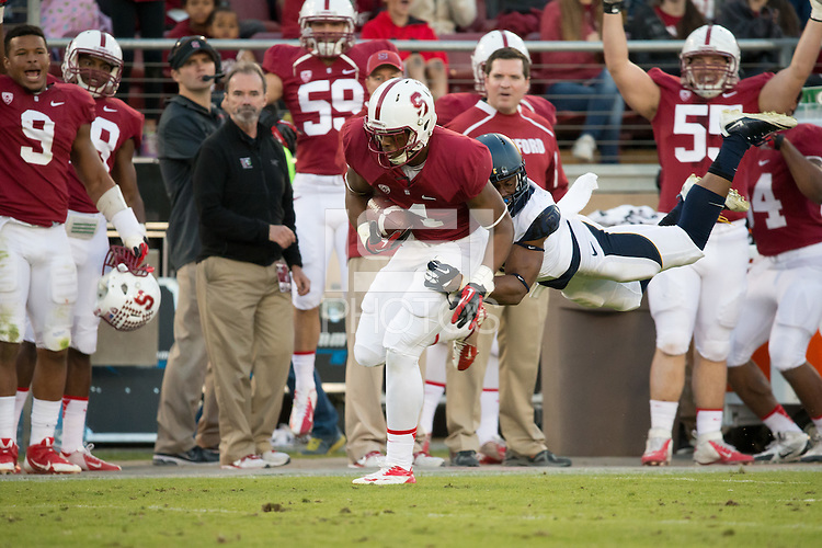 Stanford, CA -- November 23, 2013:  Stanford's Francis Owusu during a game against Cal at Stanford Stadium. Stanford defeated Cal 63-13.
