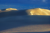 Sanddunes in the Simpson Desert Australia