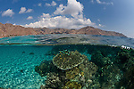 Split level of coral reef in white sandy bottom and dry topside landscape.