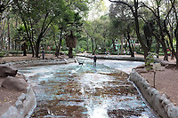 Man made nature, Parque Mexico, Condesa, Mexico City