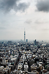 Tokyo, June 24 2013 - View over the city, with the Tokyo Skytree in the background.