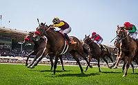 ARCADIA, CA -APRIL 08: Hillhouse High #7, ridden by VCorey Nakatani defeats Mokat #3 with Rafael Bejarano to win the royal Heroine Stakes at Santa Anita Park on April 08, 2017 in Arcadia, California. (Photo by Alex Evers/Eclipse Sportswire/Getty Images)