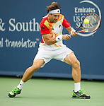 David Ferrer (ESP) advances to the final after defeating Julien Benneteau (FRA) by 63 62 at the Western & Southern Open in Mason, OH on August 16, 2014.