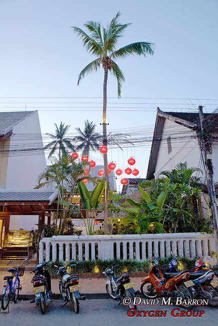 Street Scene with Red Lanterns, Palm and Motorbikes