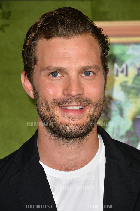 """LOS ANGELES, CA. October 04, 2018: Jamie Dornan at the Los Angeles premiere for """"My Dinner With Herve"""" at Paramount Studios.<br /> Picture: Paul Smith/Featureflash"""