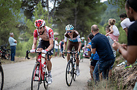 Thomas de Gendt (BEL/Lotto-Soudal) up the steepest part of the brutal Mas de la Costa: the final climb towards the finish<br /> <br /> Stage 7: Onda to Mas de la Costa (183km)<br /> La Vuelta 2019<br /> <br /> ©kramon