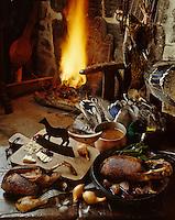 Europe/France/Limousin/23/Creuse: Canard sauvage au sang photographié au Château de Boussac