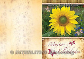 Alfredo, FLOWERS, paintings, BRTOCH40513CP,#F# Blumen, flores, illustrations, pinturas
