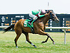 Silentiary winning Delaware Park on 6/28/12