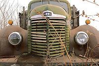 Truck grill