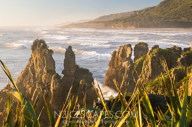 Sunset on rugged and wild coast in Punakaiki, Paparoa National Park, West Coast, Buller Region, New Zealand