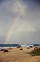 Rainbow at Kirra, Australia..photo:  joliphotos.com