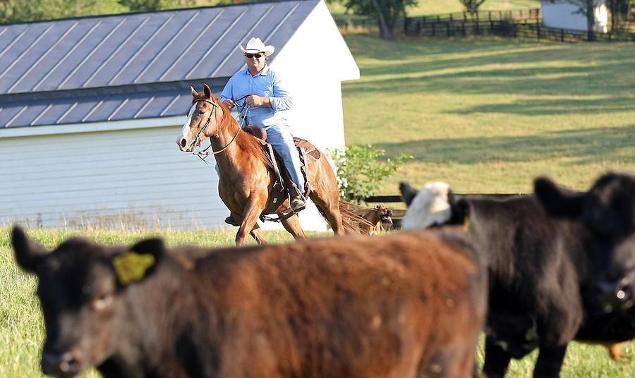 Cowboys in Albemarle County, VA.
