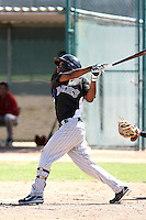 Angelys Nina - Colorado Rockies - 2010 Instructional League.Photo by:  Bill Mitchell/Four Seam Images..