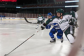 Tyler Bishop (UMB - 21), Ryan McDougall (Babson - 2) - The UMass Boston Beacons defeated the Babson College Beavers 5-1 on Thursday, January 12, 2017, at Fenway Park in Boston, Massachusetts.