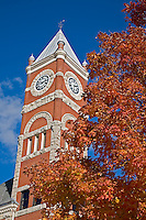 Monroe, WI<br /> Green County courthouse with fall colored tree
