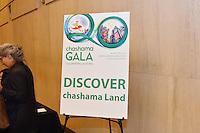 20th Anniversary Chashama Gala