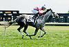 Scarlet's Number winning at Delaware Park on 7/28/12