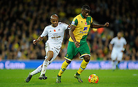 Andre Ayew of Swansea City and Sebastien Bassong of Norwich City during the Barclays Premier League match between Norwich City and Swansea City played at Carrow Road, Norwich on November 7th 2015